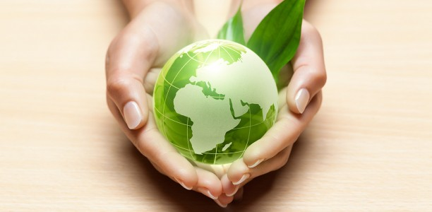 Le bois de chauffage, une solution pour préserver l'environnement