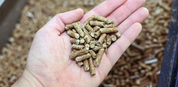 Combien coûte une chaudière à granulés ?