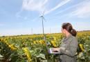 L'étude de vent : indispensable avant l'installation d'une éolienne